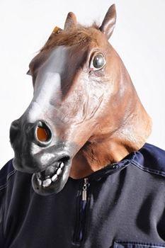 Obrázek Maska - hlava koně