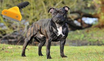 Obrázek Hrablo pro psy - M