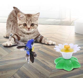 Obrázek Hračka pro kočky – létající kolibřík