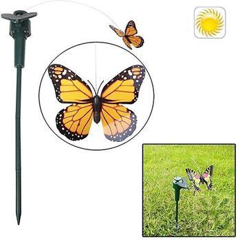 Obrázek Solární motýl