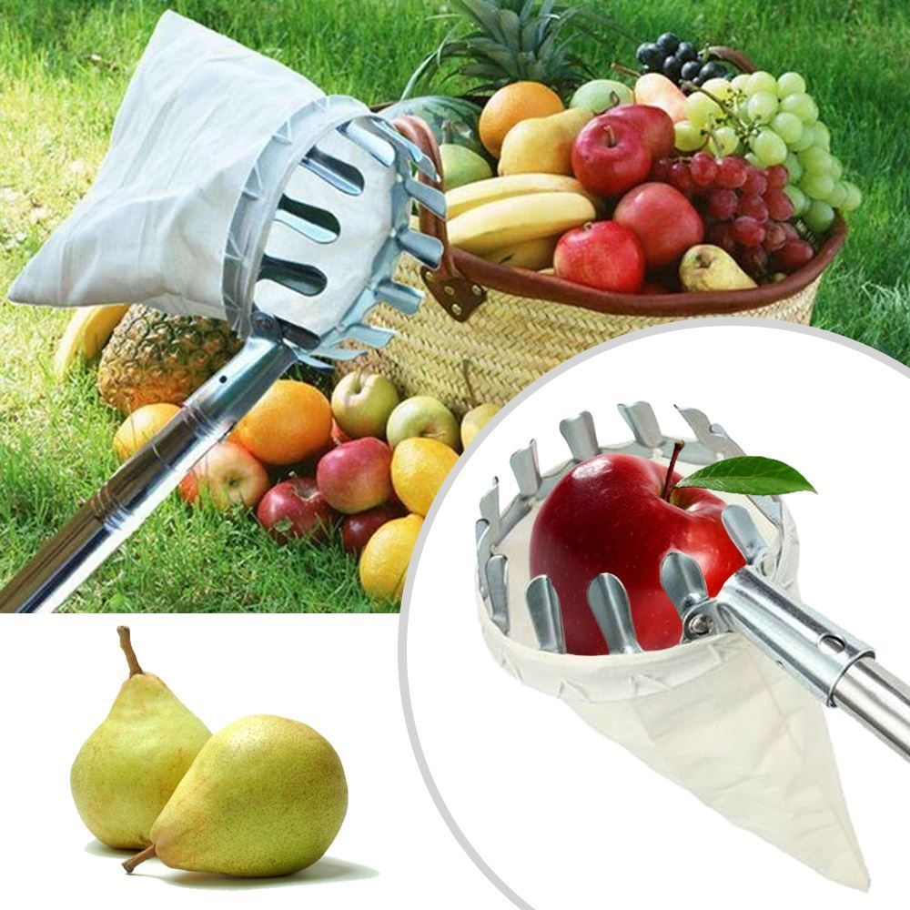 Česáček na ovoce