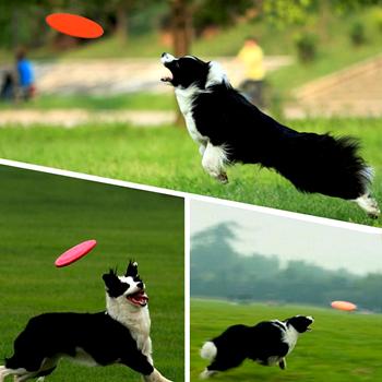 Obrázek Silikonové frisbee pro psy