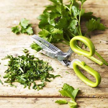 Obrázek Nůžky na bylinky