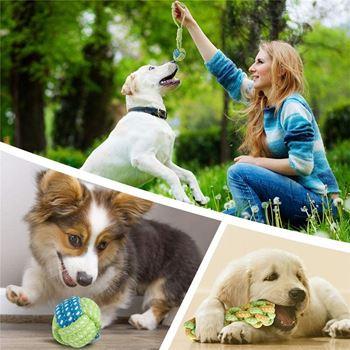 Obrázek z Sada hraček pro psy